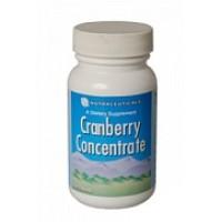 Концентрат клюквы / Cranberry Concentrate